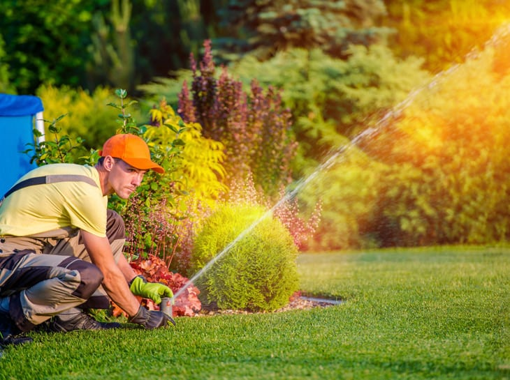Lawn Maintenance Companies Near Me